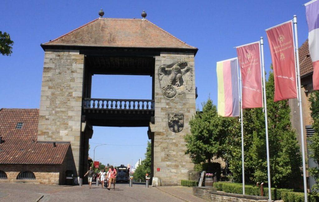 La ruta del vino alemana.